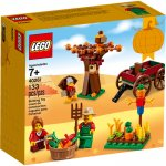 LEGO® 40261 Thanksgiving Harvest