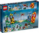 LEGO® Harry Potter 75956 Quidditch Match